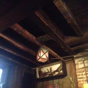 downstairs at The Olde Pink House.  so rustic.